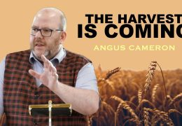 The Harvest Is Coming – Angus Cameron