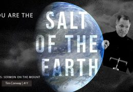 You Are the Salt of The Earth – Tim Conway